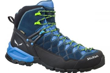 MS Alp Trainer Mid GTX (Man)