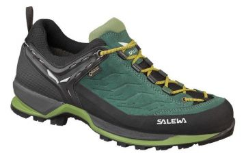 MOUNTAIN TRAINER GTX SHOES