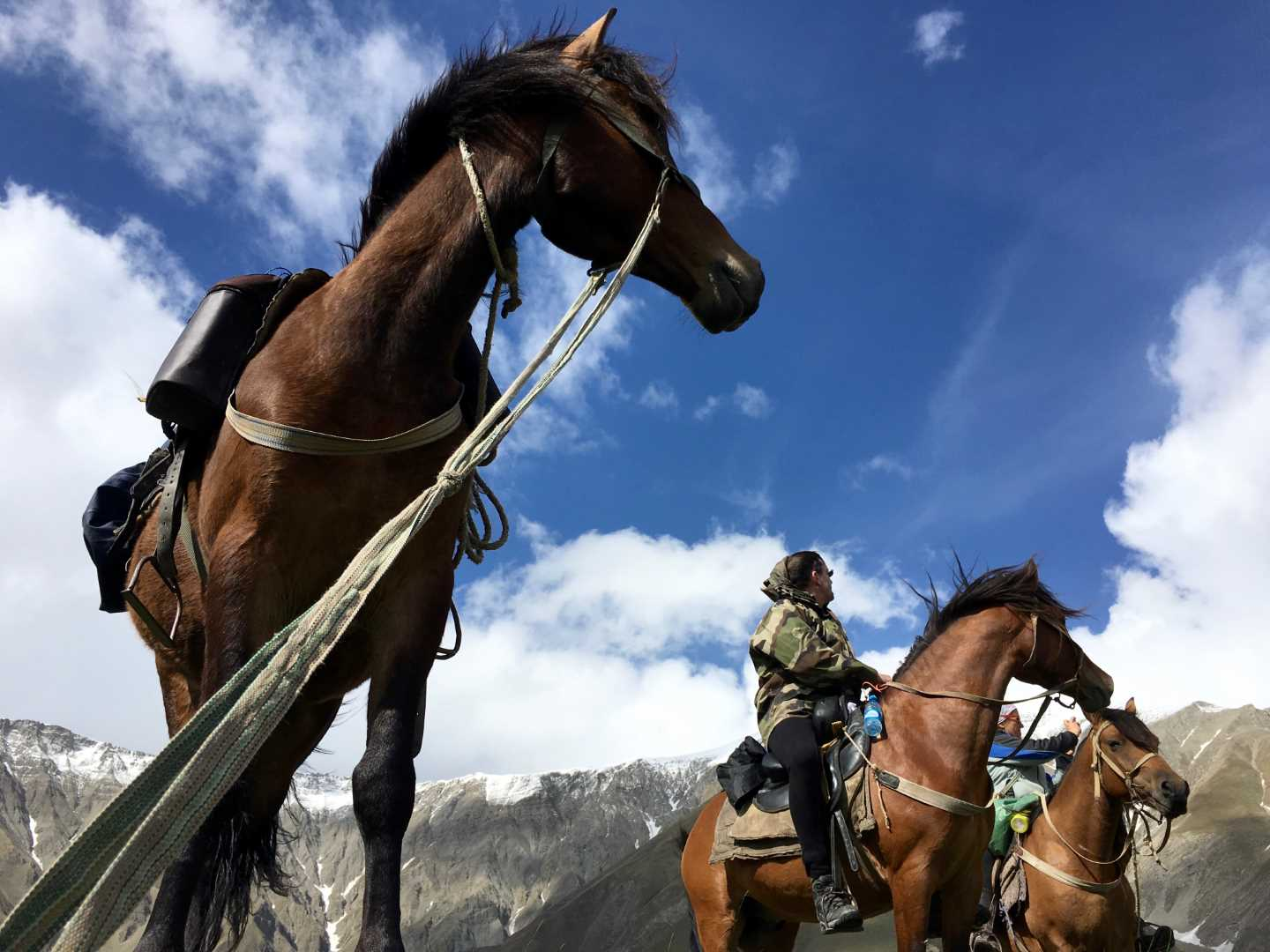 Pioneering Azerbaïdjan Horse Expedition